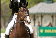 Three Day Eventing / by Ruth Payne Moore