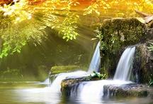 Waterfalls / by Marie Nolan