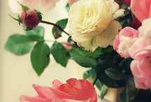 About the Garden / Gardening Quotes, Books, Roses and Photos. / by Willow