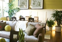 decor design / by JOHANNA JENKINS