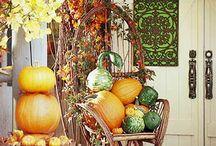 Halloween decorations / by Lannette SparksJaynes