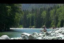 Destination - West Coast Wilderness Resorts / by Max West Global DMC (Canada)
