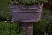 Garden joys / by Gretchen Rush