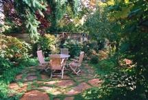 Garden / by Margo Catts