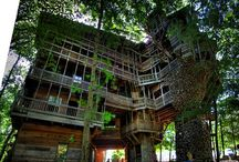 Treehouse / by popEating