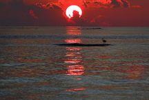 light after dark... / by Pradeep Roy