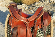 Tack and Rider / by TrixiePixi