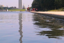 New Reflecting Pool / by ABC7 News WJLA