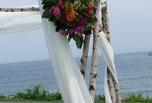 Beach wedding / by Jamie Schneider