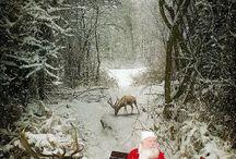 Christmas / by Pietro Pizzarella