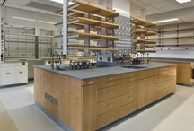 Laboratory  / With a clean, contemporary finish, Rakks brings style and specificity to any laboratory  / by Rakks Shelving
