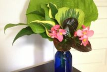 flower arrangements / by helen norman
