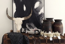 decor [more!] / by stam300b