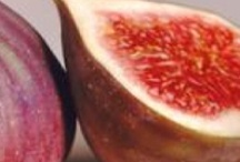 fig inspiration / everything fig related - G rated / by the girl & the fig