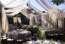 Backyard Wedding / by Jaclyn Stage