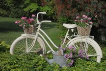 BICYCLES / by Betty & Gary