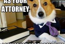 funny legal stuff / by The Criminal Defense Law Center Of West Michigan