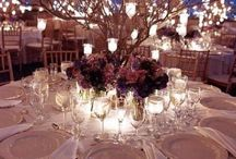 Wedding Ideas / by Alexis Duling