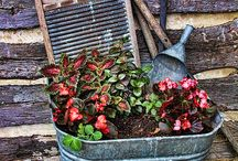 landscaping ideas / by Allison Brumm Hemann