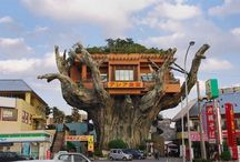 tree + house / by charles wolford