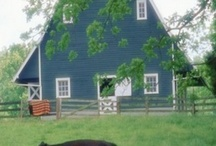 Country Girl at Heart / by Cheryl Silva Burrhus