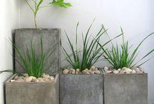 Concrete DIY / by marilyn kennedy