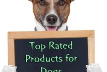 """Gift Ideas for Pets / by Mariel @ """"Or so she says..."""""""