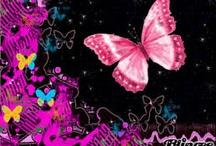 Papillon / by Astrid Tchana