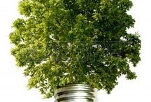 Go Green Theme - Ecological Friendly / by 123RF