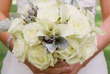 Weddings at Ojai Valley Inn & Spa / by Ojai Resort