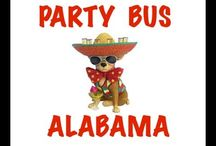 Party Bus Rental Videos / Party bus rental in your city / by Party Bus Rental Headquarters
