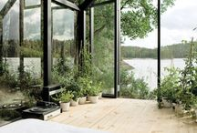 Greenhouse / by Karolina Strandberg