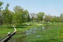 Northeast Ohio golf courses / Your guide to Northeast Ohio golf courses!  / by The Morning Journal