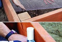 Raised garden beds  / by Cherie Staples