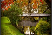 Country Covered Bridges / by Lorie Saad