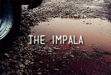 Supernatural: The Impala / It's more than just a car, it's home to a couple of brothers who save lives and hunt things.  / by Sylvia Hientz