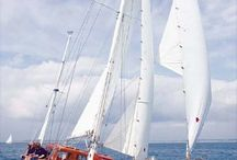 Sailing   / by Leonard Cassidy