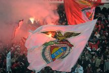 S L Benfica / by Rodolfo Costa