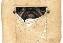 Pug / by Jenny Sutherland