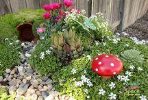 gardening / by Sara Gelwix