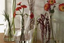 Bottles and Vases / by Linda Lemieux