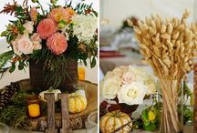 Wedding / by Sandra Downie | SandraDownie.com