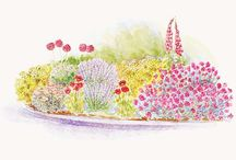 Gardens / by Gail Malaby