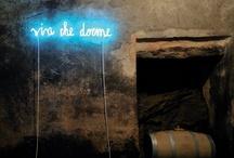 Neon message / by Missy Jennings