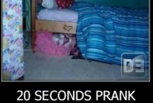 pranks / by Tiffany Gatewood