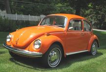 I  ❤️ BUGS / The VW Beetle! / by Rough Diamond