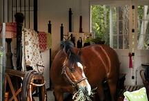 Horse Barns / by Kathryn M Ireland