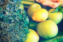 Juice recipes / by Carrie Lundell