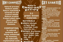 Gardening - Composting / by Loreen Pyne