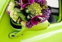 Flowers / Wedding flowers / by Intricate Icings